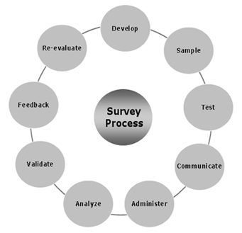 perception survey process