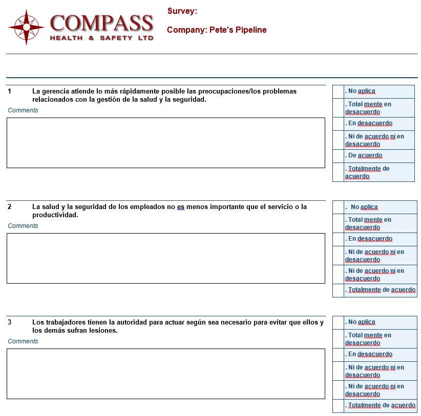 survey in spanish
